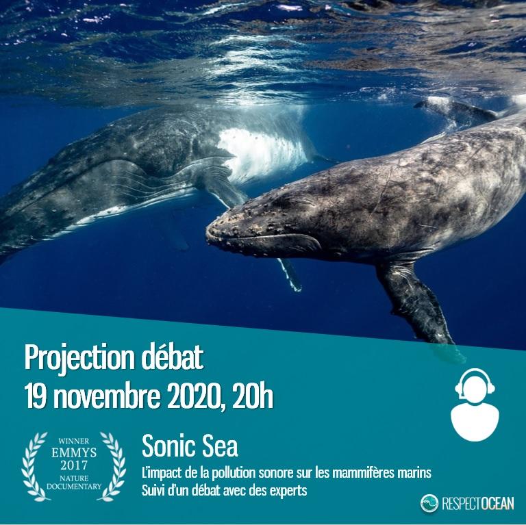 instagram projection debat