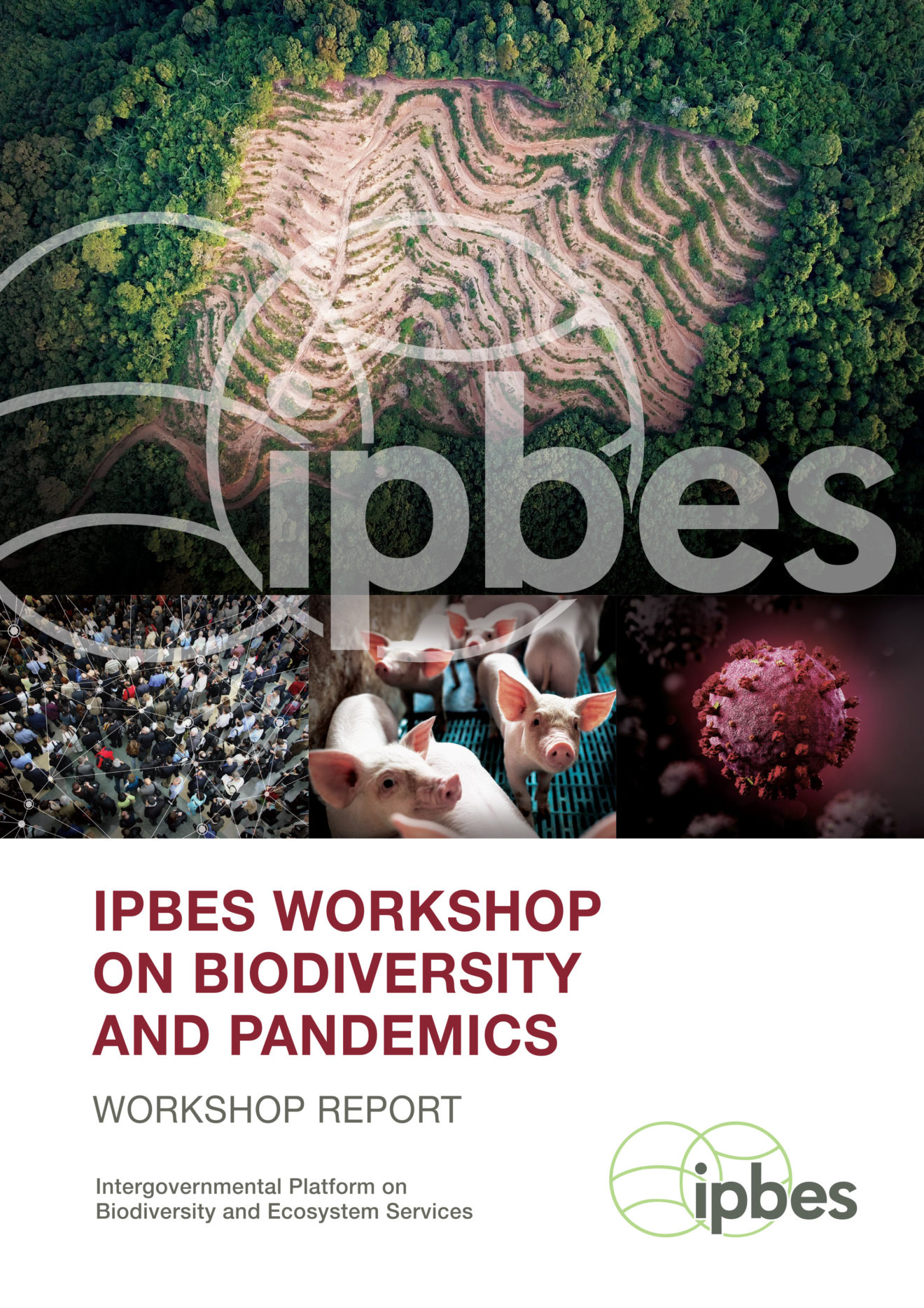 201026_IPBES_Pandemic_Workshop_Report_Cover