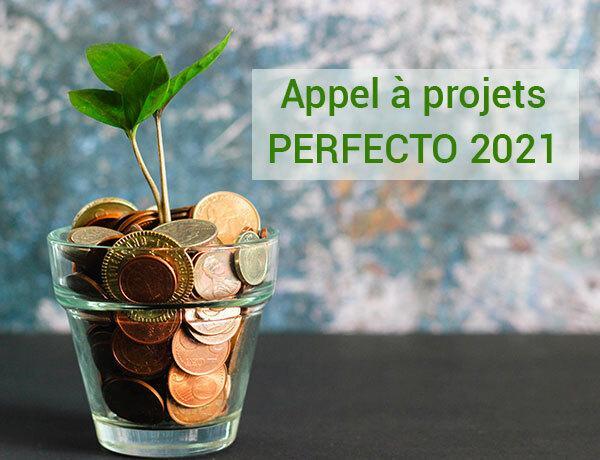 app-perfecto-2021-web
