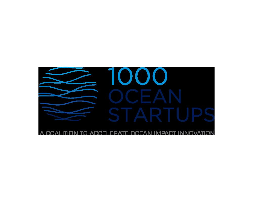 1000-ocean-startups-1000x800